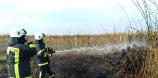 Három hektáron égett a nádas