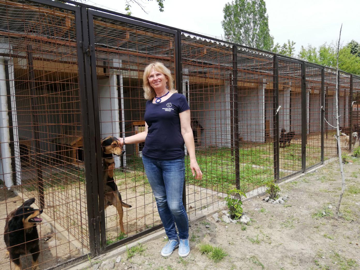Adjunk esélyt az állatoknak is-megújult az Ideiglenes Befogadó Telep Kiskőrösön