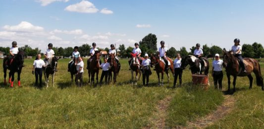 Gmoser Zsuzsi és a nyári lovastáborok